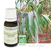 eucalyptus-citronne-bio-10ml-eucalyptus-citriodora-pranarom-huiles-essentielles